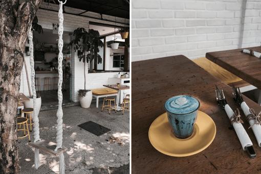 Blue Latte. Blue Latte. In steeds meer steden kun ze tegenwoordig bestellen. Waar moet je in Bali en Amsterdam zijn voor een groene matcha latte, red velvet latte, golden turmeric latte of een blue latte. Deze magische drankjes wil je proeven!